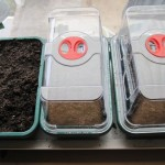 Propagator with cover
