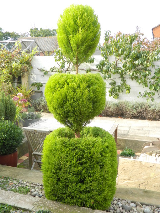 TOPIARY complete